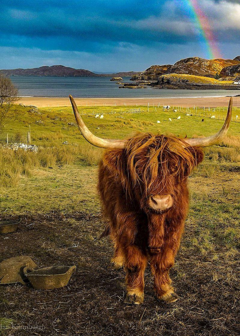 This week's winner, taken by Ian Kinniburgh
