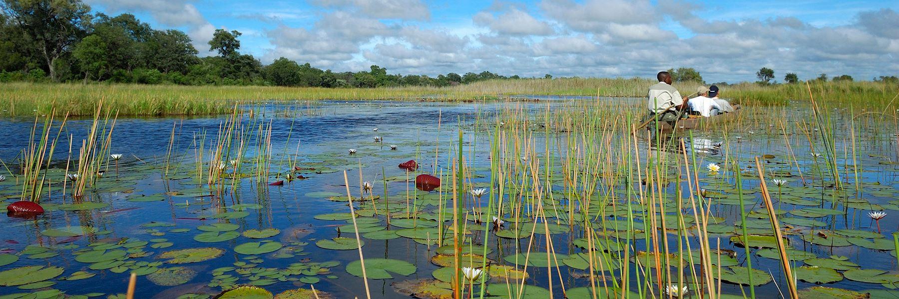 Visit the Okavango Delta, Botswana