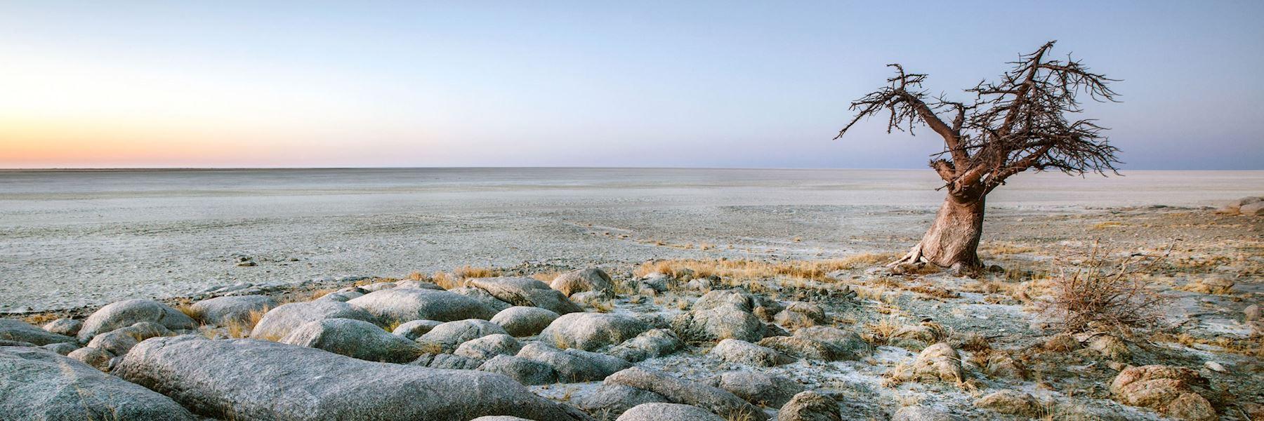 Visit Makgadikgadi Pans, Kalahari, Botswana