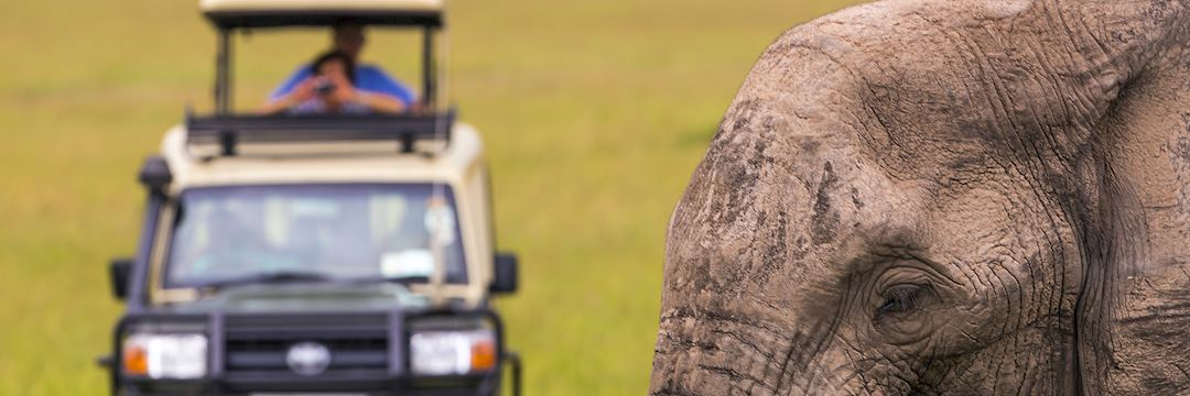 Getting close the elephants, Kenya