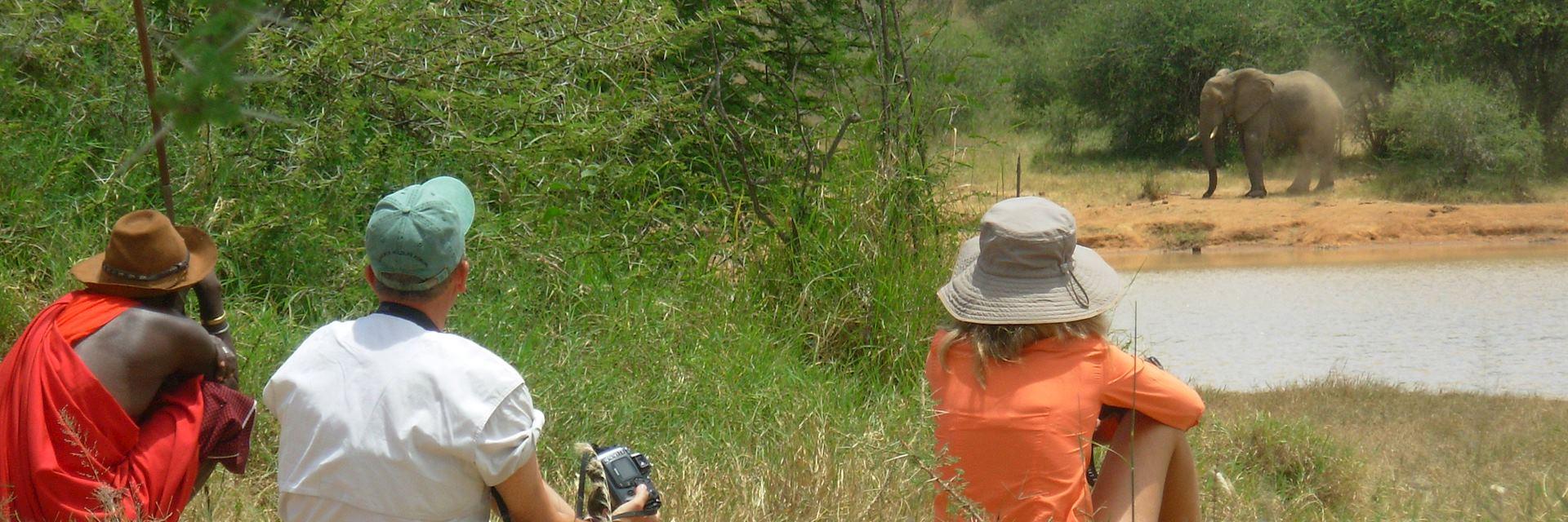 Walking safari in Karisia Hills