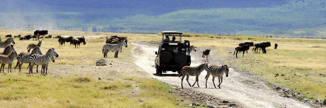 Safari drive in Tanzania