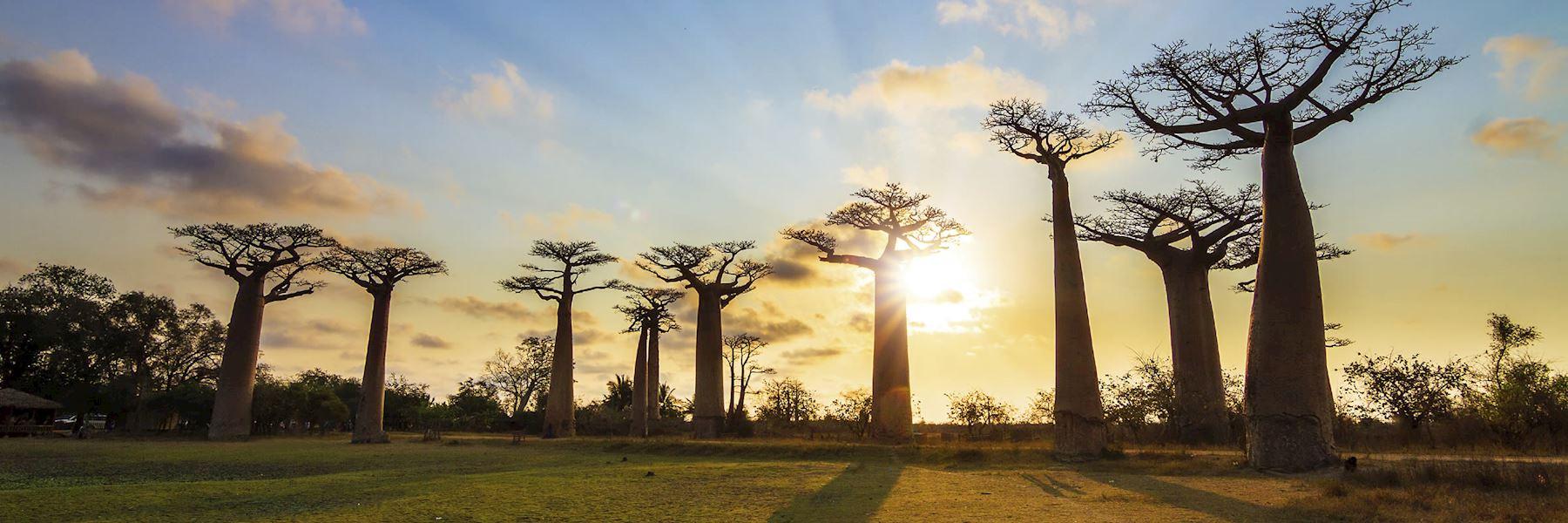 Madagascar trip ideas