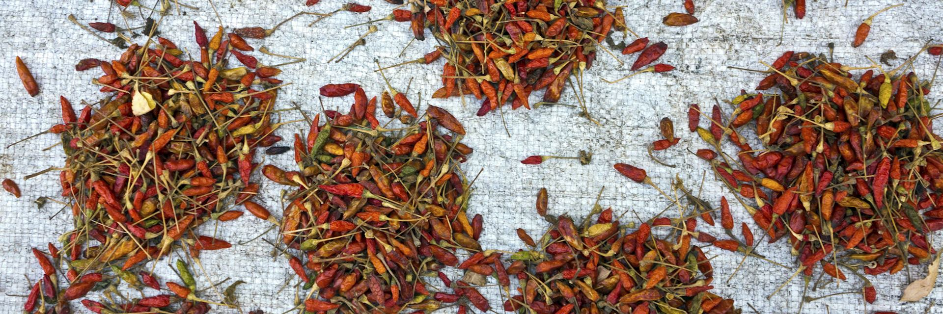 Chillies drying in a Mozambique market