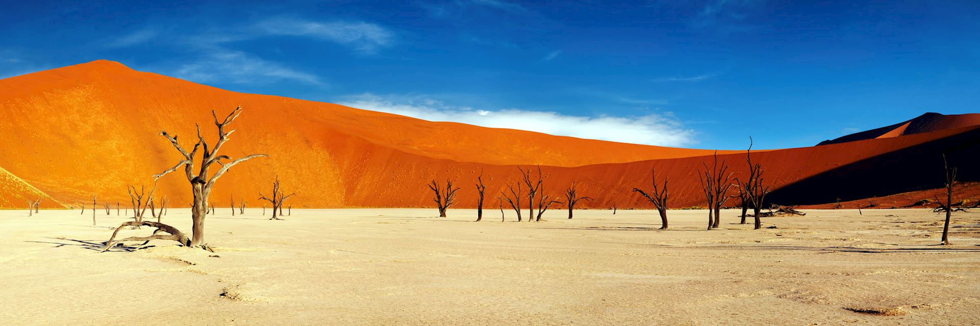 Sand dunes at Sossusvlei, Namib-Naukluft National Park