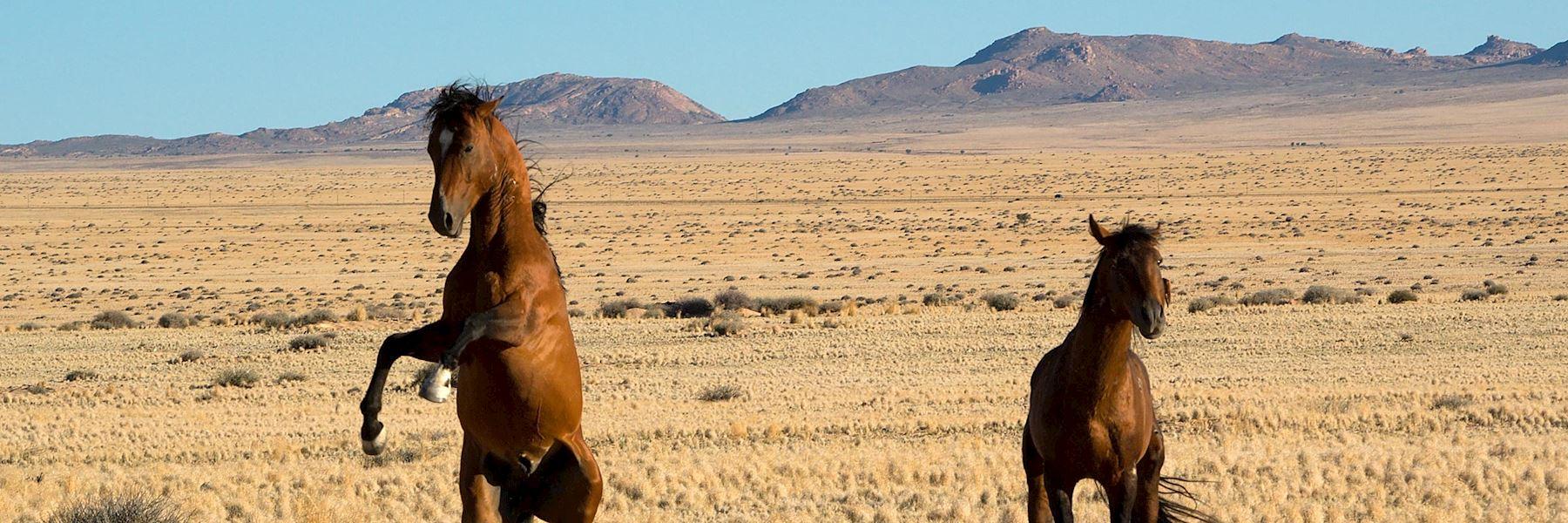 Visit Aus, Namibia