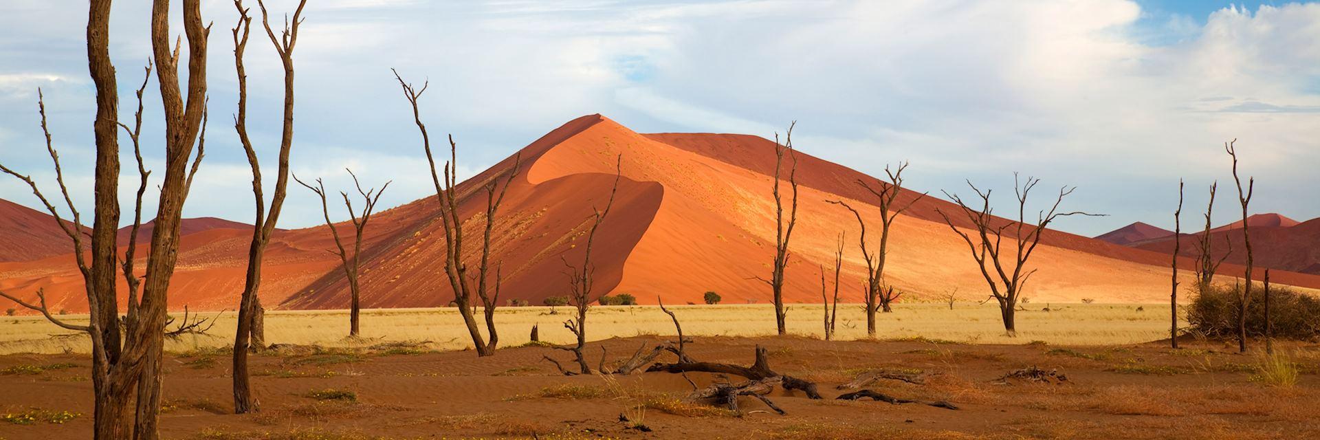 Dune in Sossusvlei