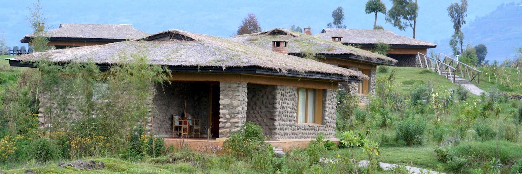 Gorilla Mountain View Lodge