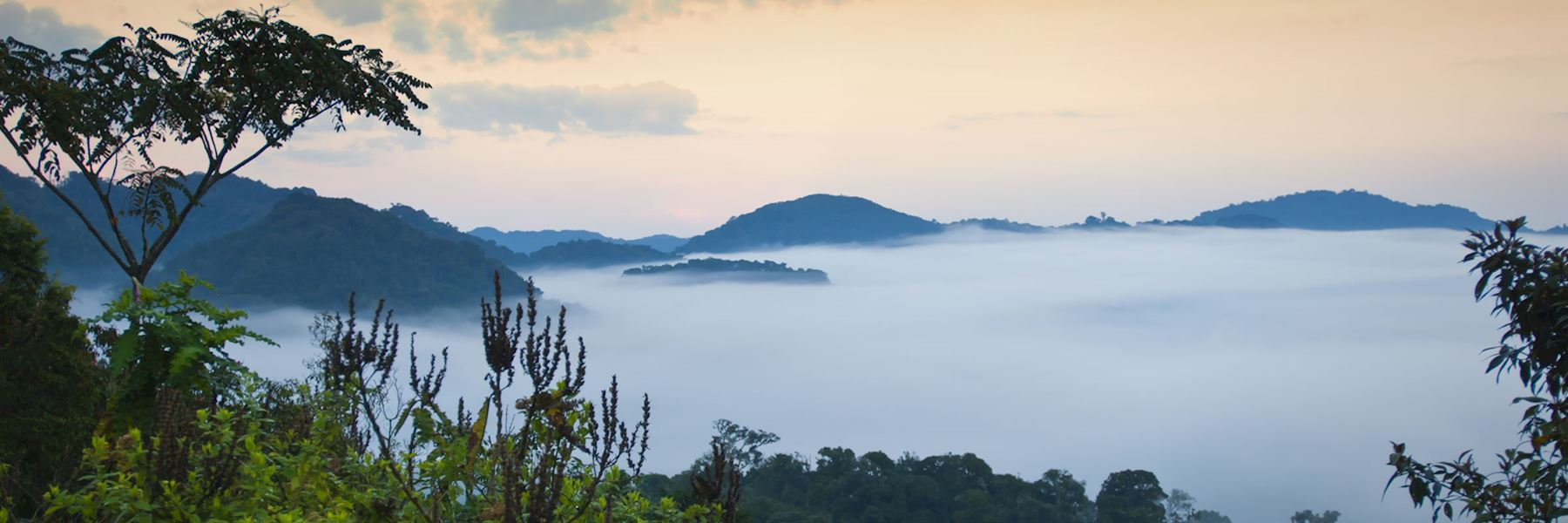 Rwanda vacations and safaris