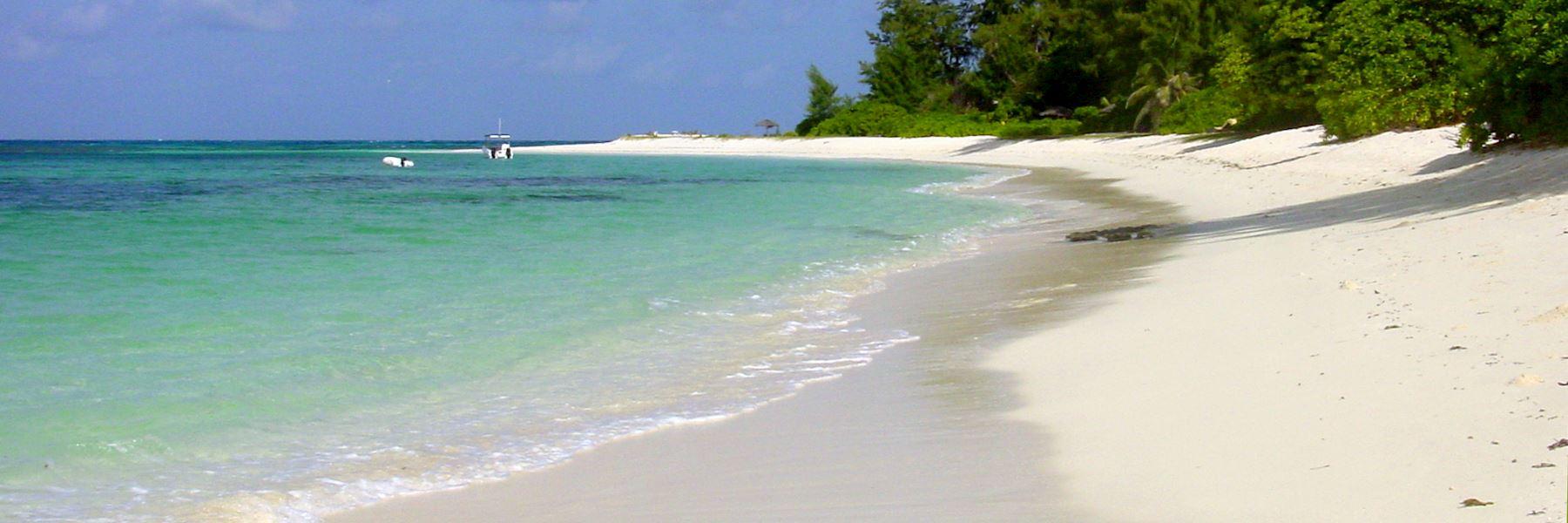 Visit Denis Island, Seychelles