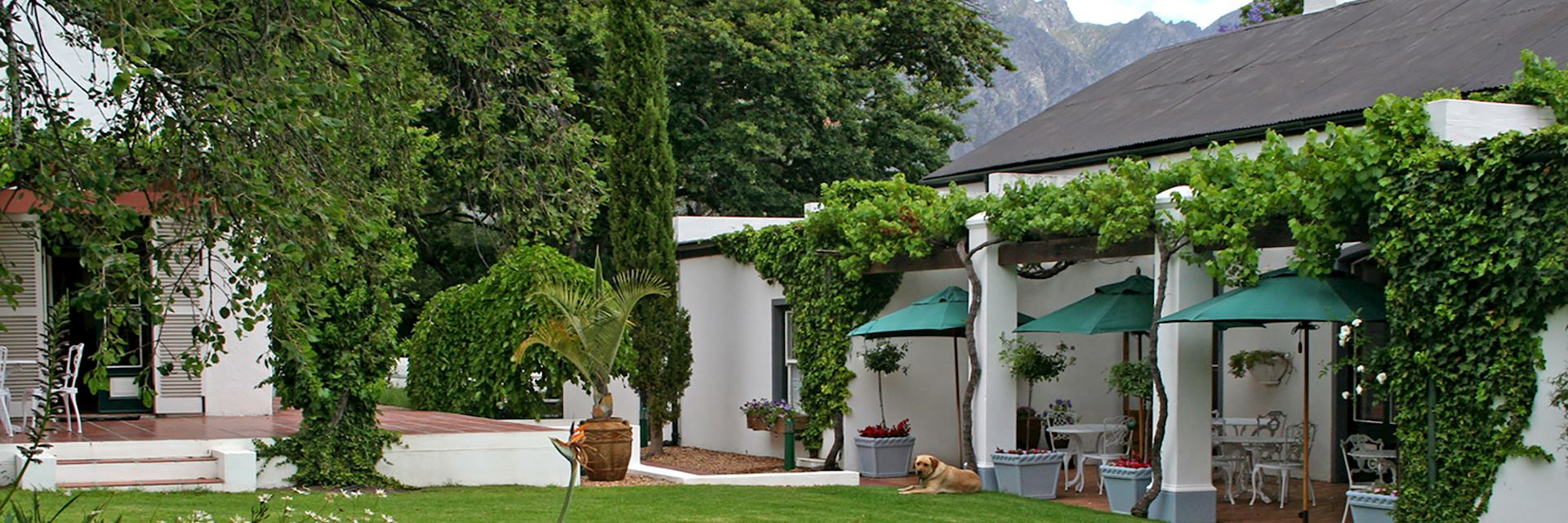 L'Auberge Chanteclair, South Africa