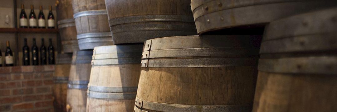 Wine barrels, Cape Region