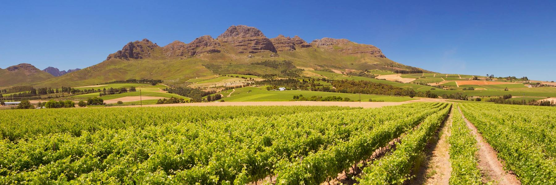 Visit Stellenbosch, South Africa