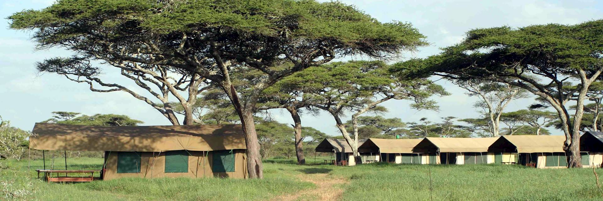 Serengeti Kati Kati Camp