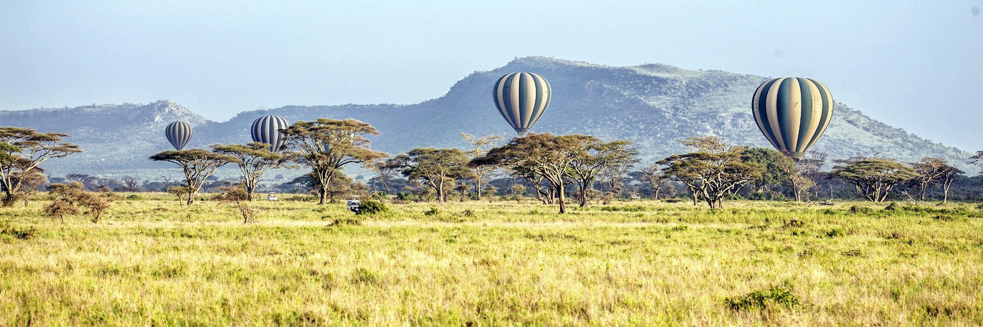 Balloons over the Serengeti National Park