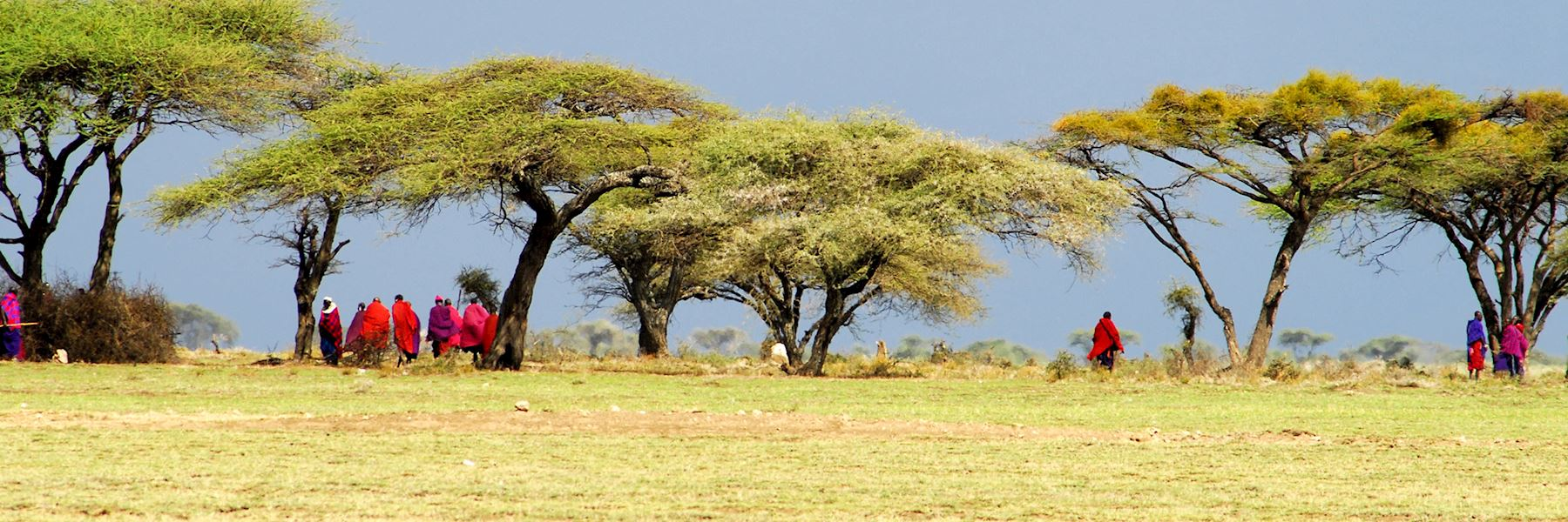 Tanzania safaris & vacations