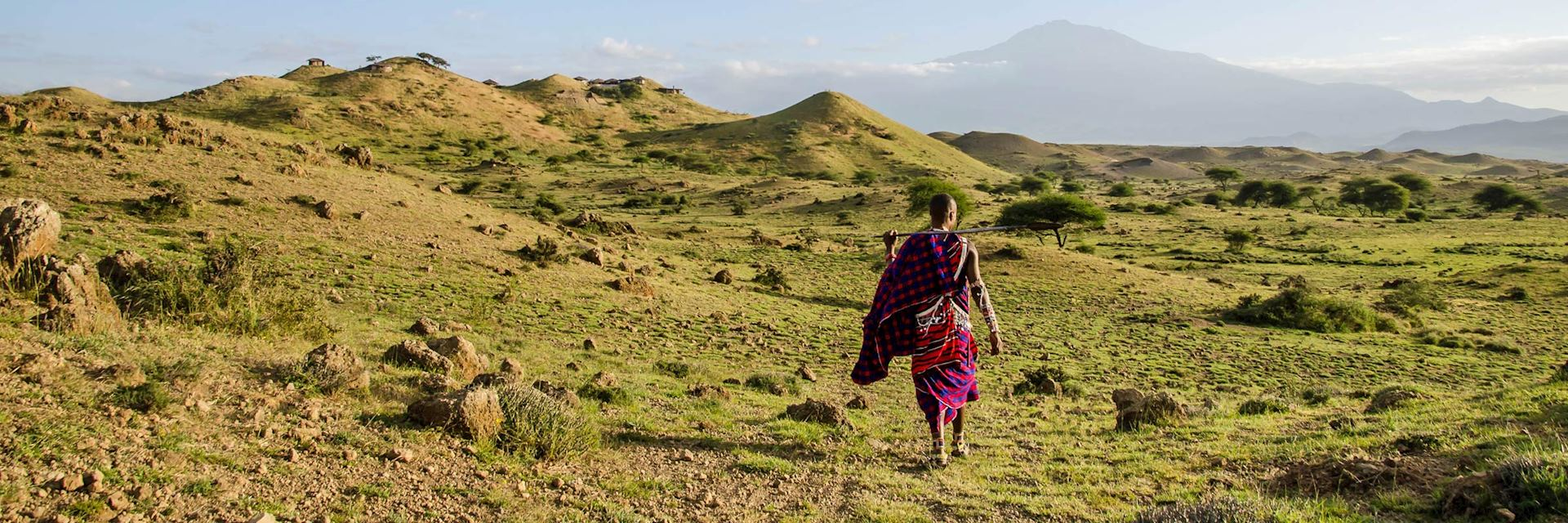 Maasai warrior in the West Kilimanjaro foothills