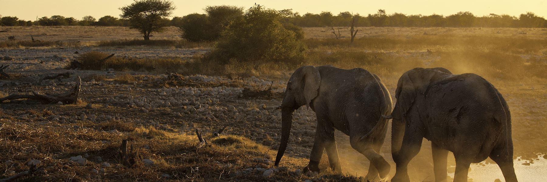 Zambia safaris & holidays