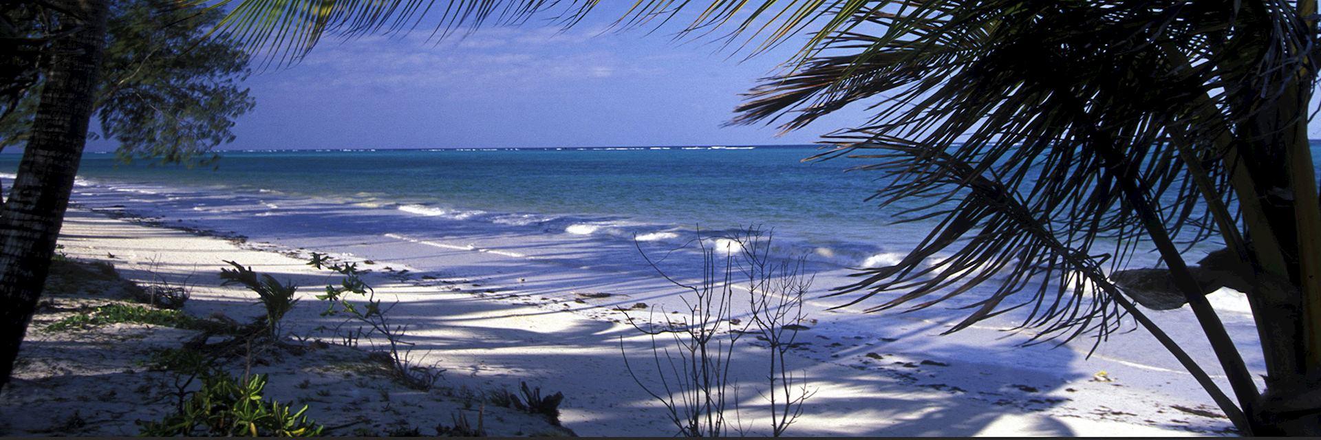 Bwejuu Island, Mafia Archipelago, Zanzibar
