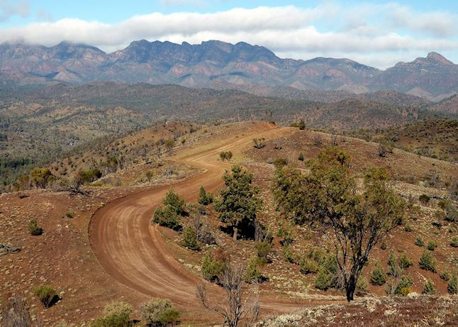 flinders ranges and outback visitor guide