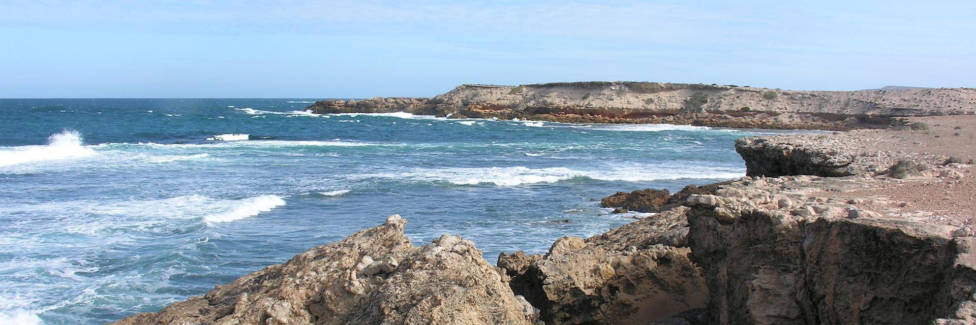 Baird Bay, Eyre Peninsula