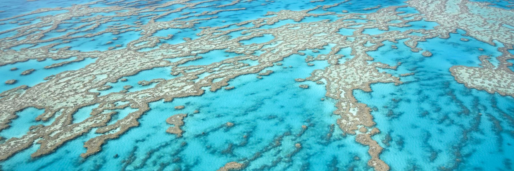 Visit the Great Barrier Reef, Australia