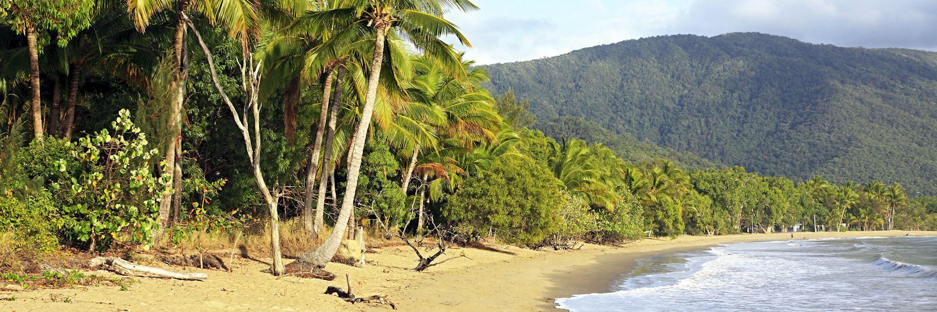 Palm Cove near Cairns
