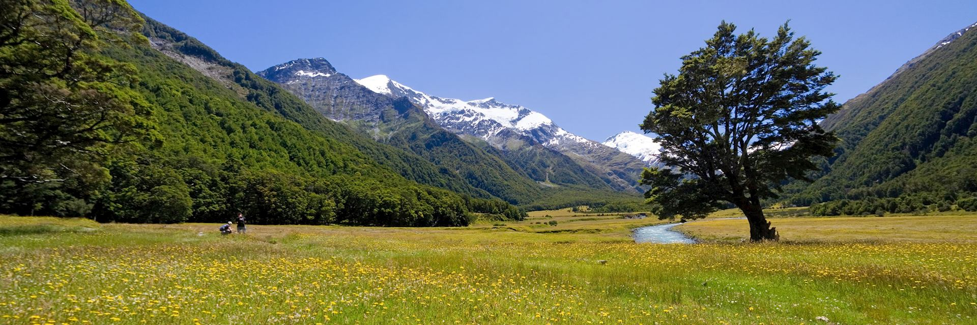 Mount Aspiring Nation Park