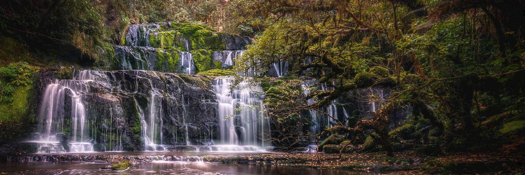 Visit the Catlins, New Zealand