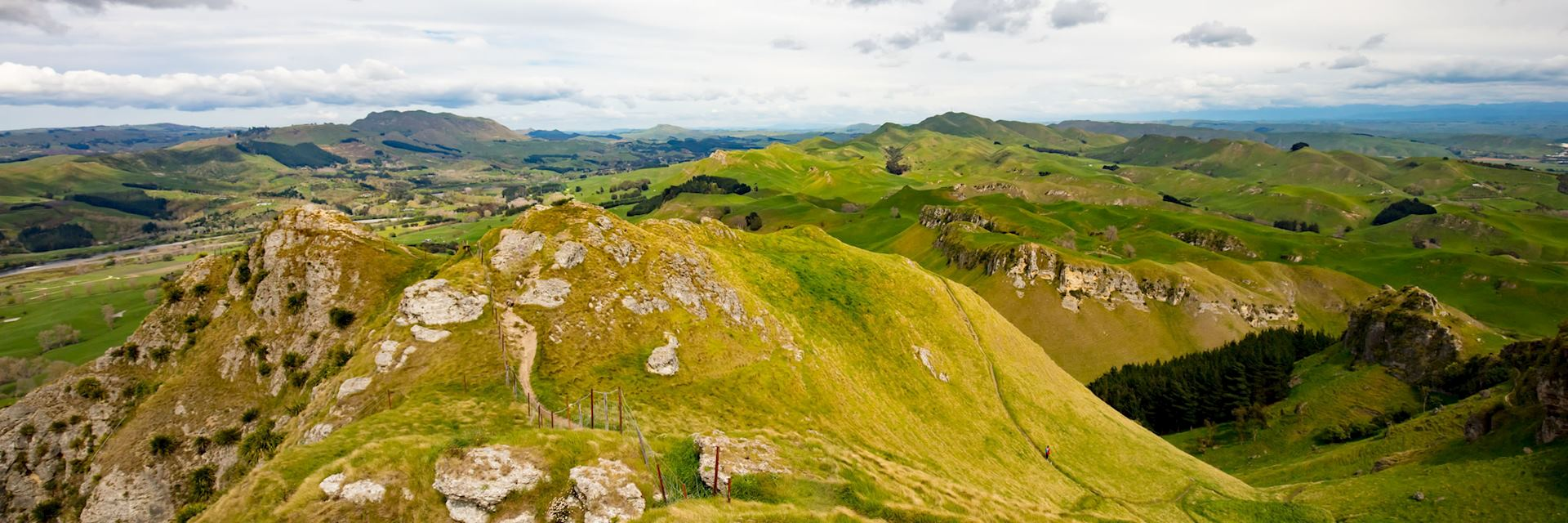 Te Mata Peak, Hastings