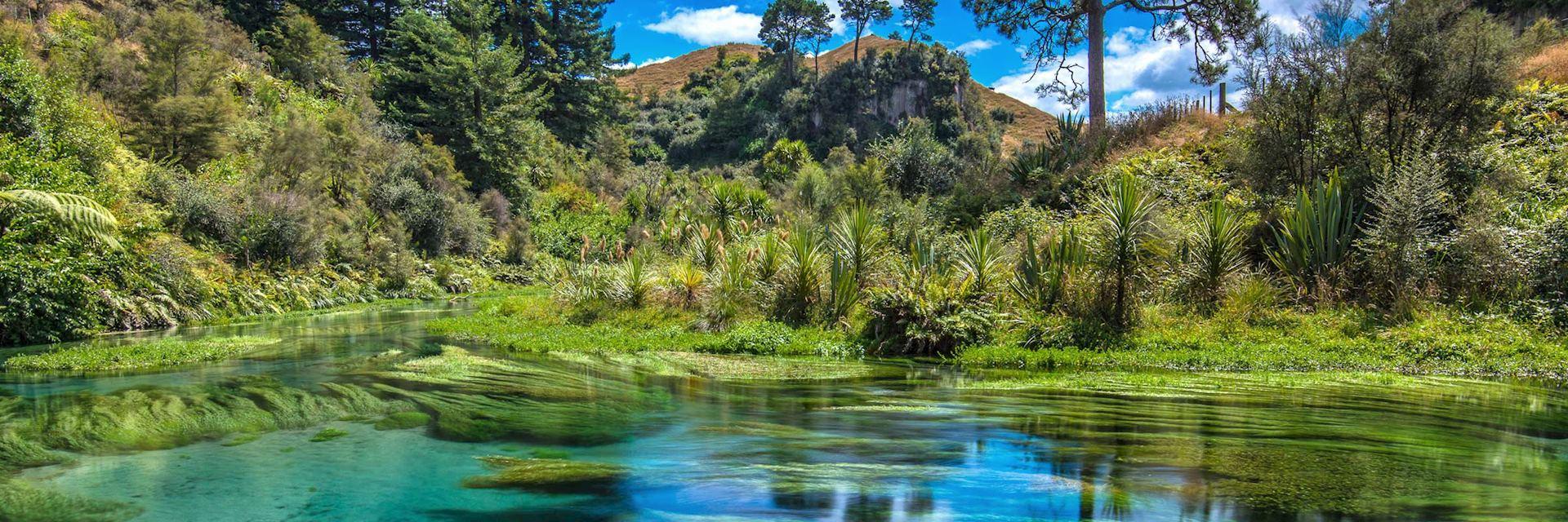 Waikato region, New Zealand