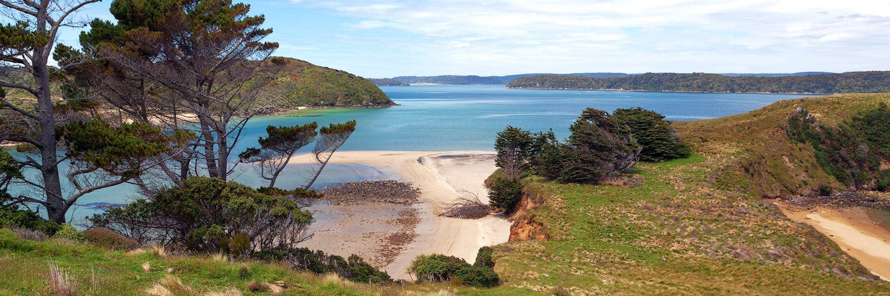 Visit Stewart & Ulva Islands, New Zealand