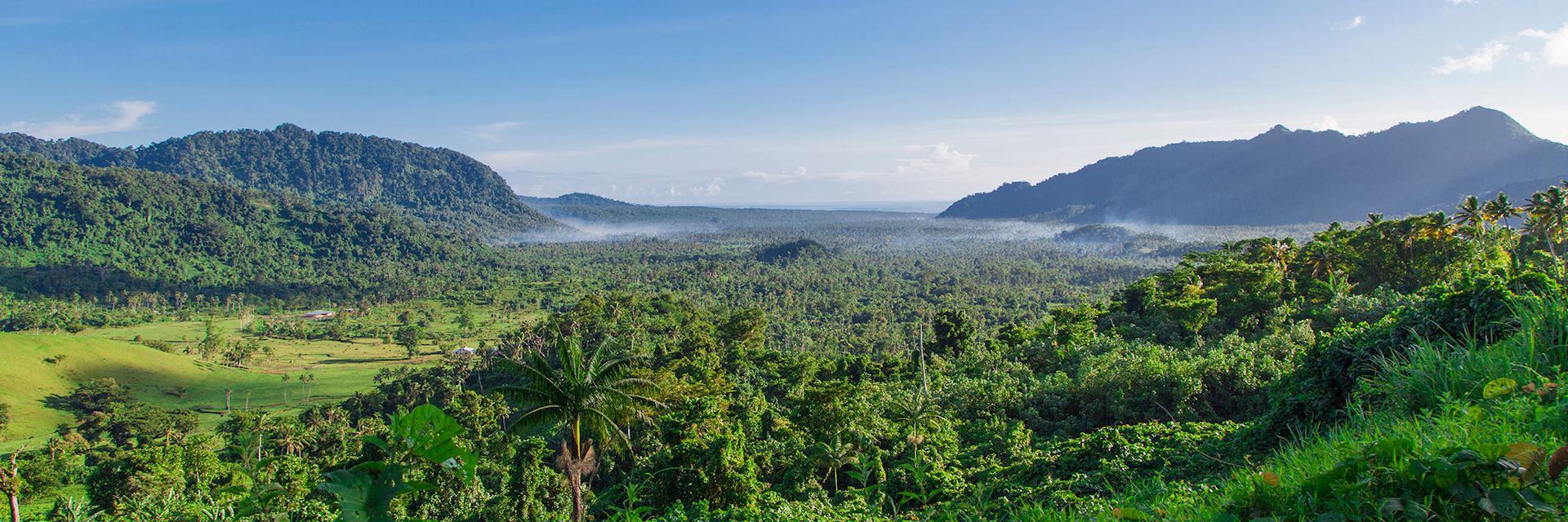Lush vegetation of Samoa