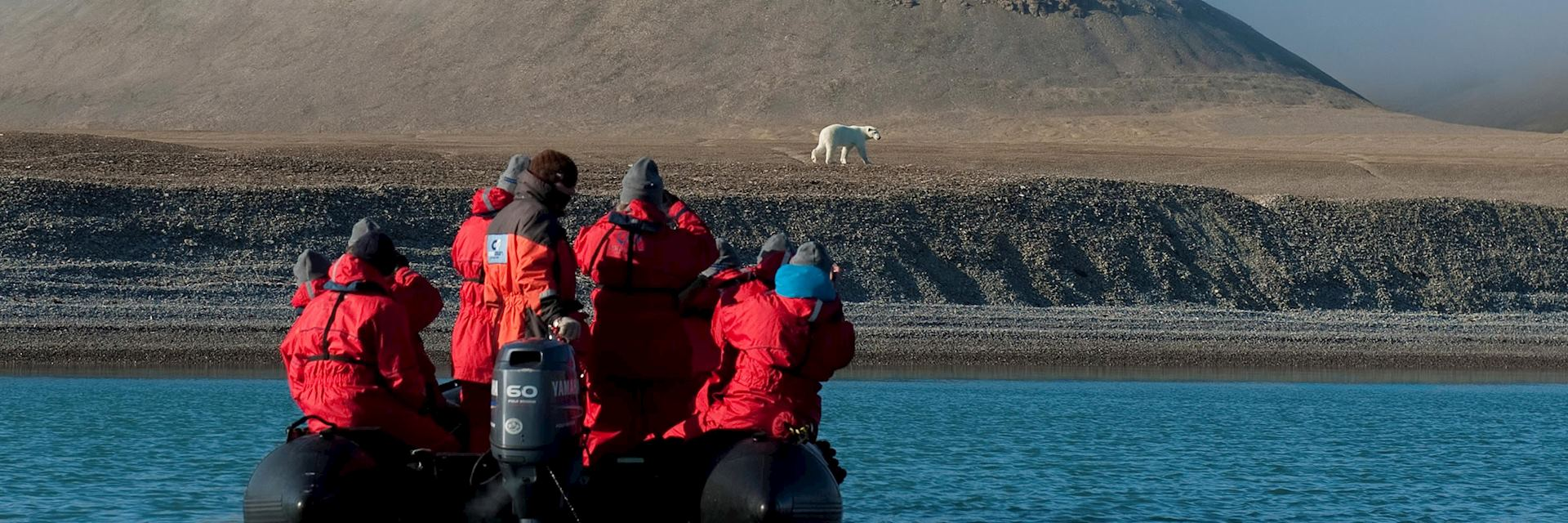 Polar bear, Northwest Passage, Canada