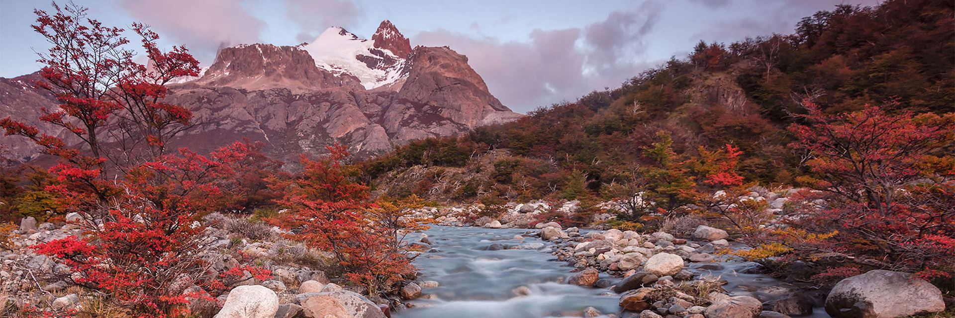 Close to Hosteria Pehoe in Torres del Paine National Park