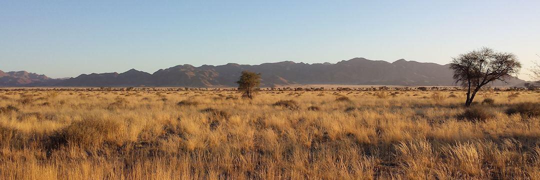 The vast desert
