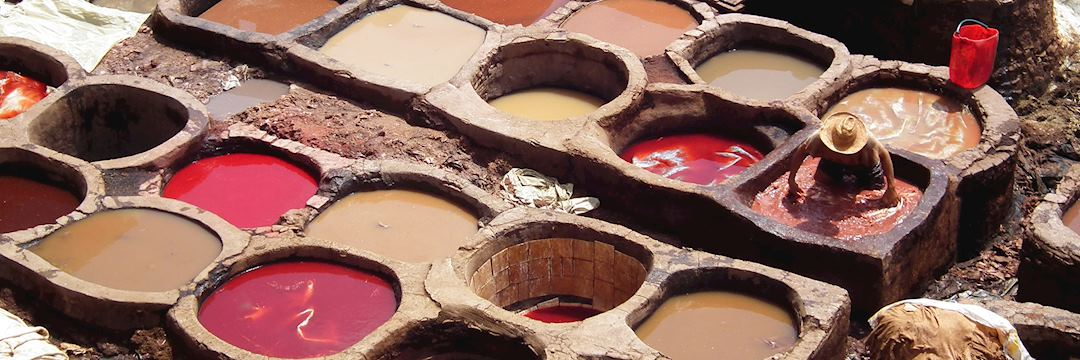 The tanneries, Fez, Morocco