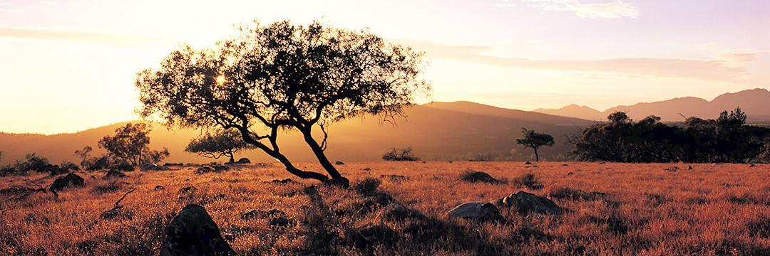 Wilpena Pound Sunset
