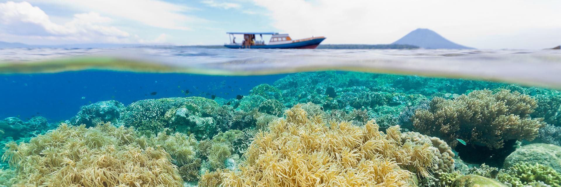 Diving the National Park, Siladen, Bunaken, Manado Tua, Indonesia