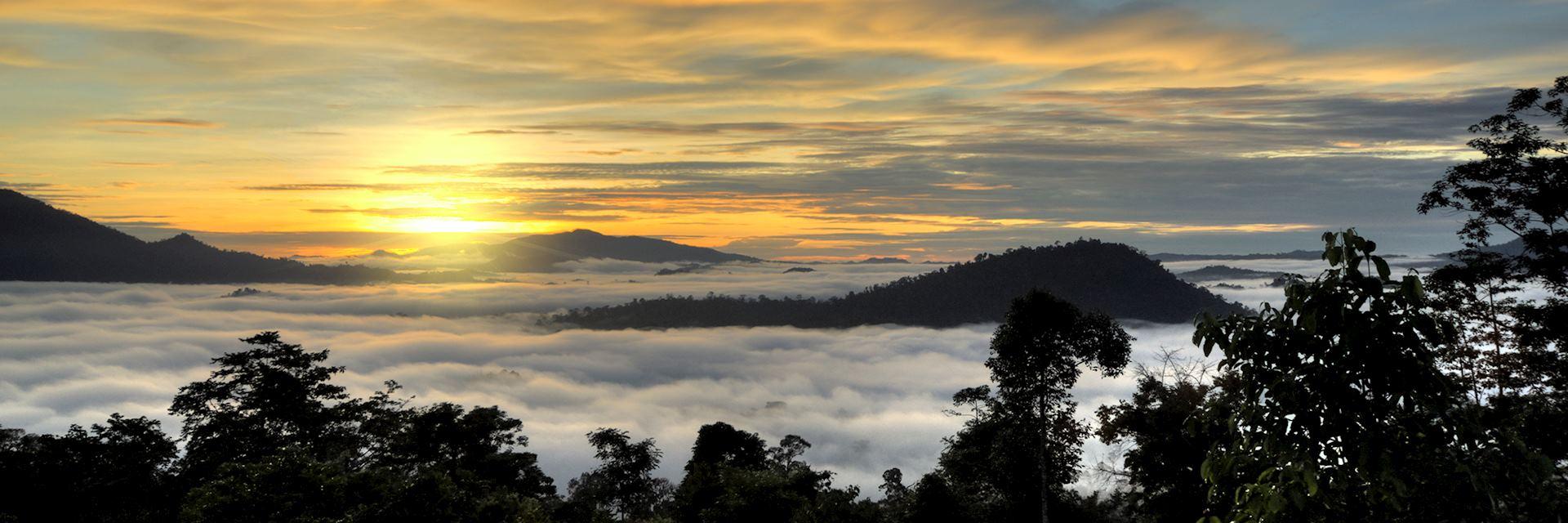 Danum Valley, sunset, Island of Borneo