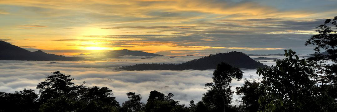 Danum Valley, sunset, Island of Borneo