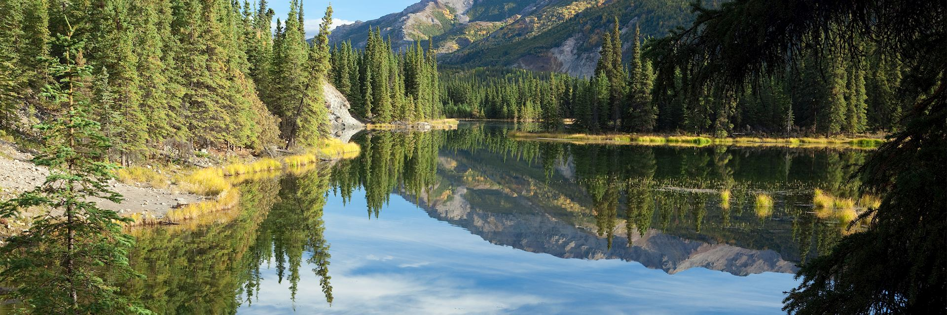 Horseshoe Lake, Denali National Park