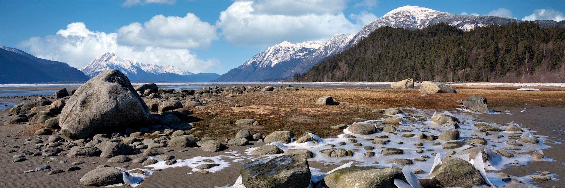 Chilkat Estuary, Haines