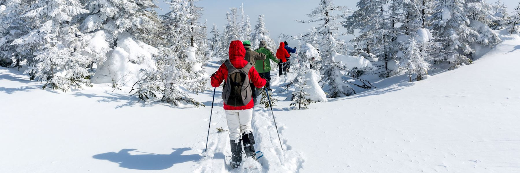 Private guided snowshoe tour of Mont Tremblant National Park