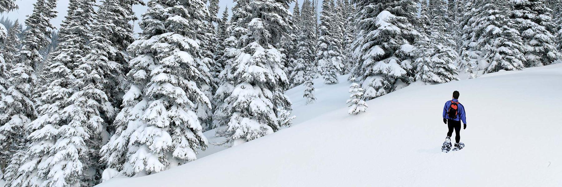Snowshoe tour on the Medicine Trail