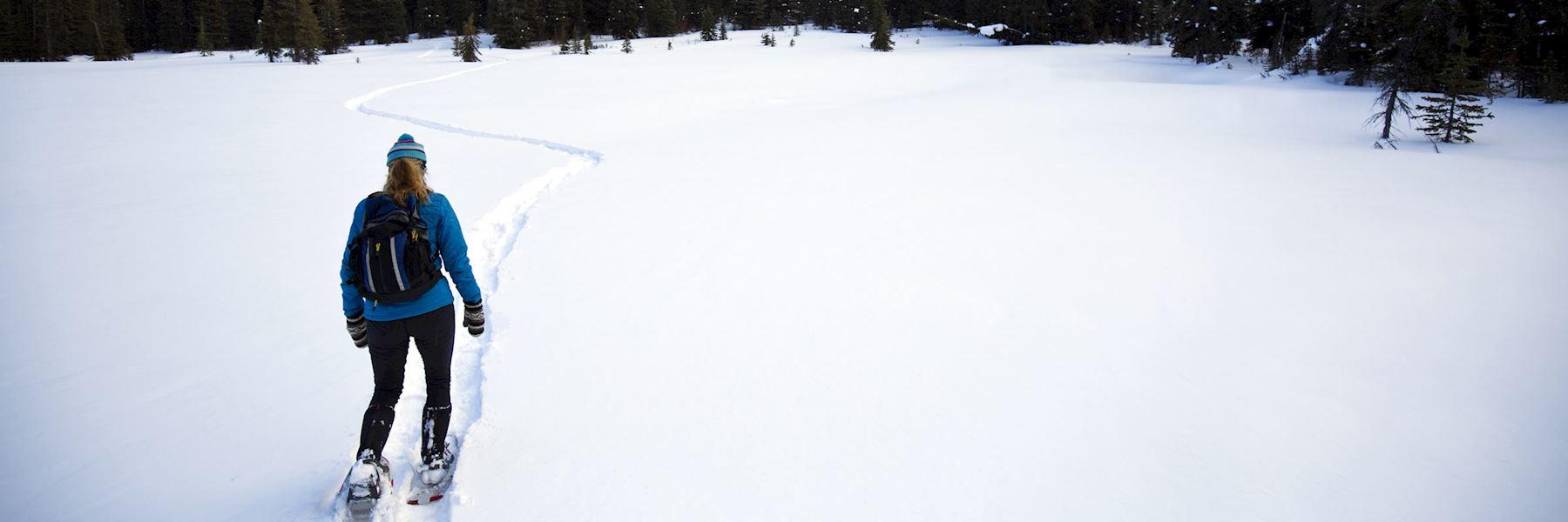 Snowshoe tour of Jasper's alpine wilderness