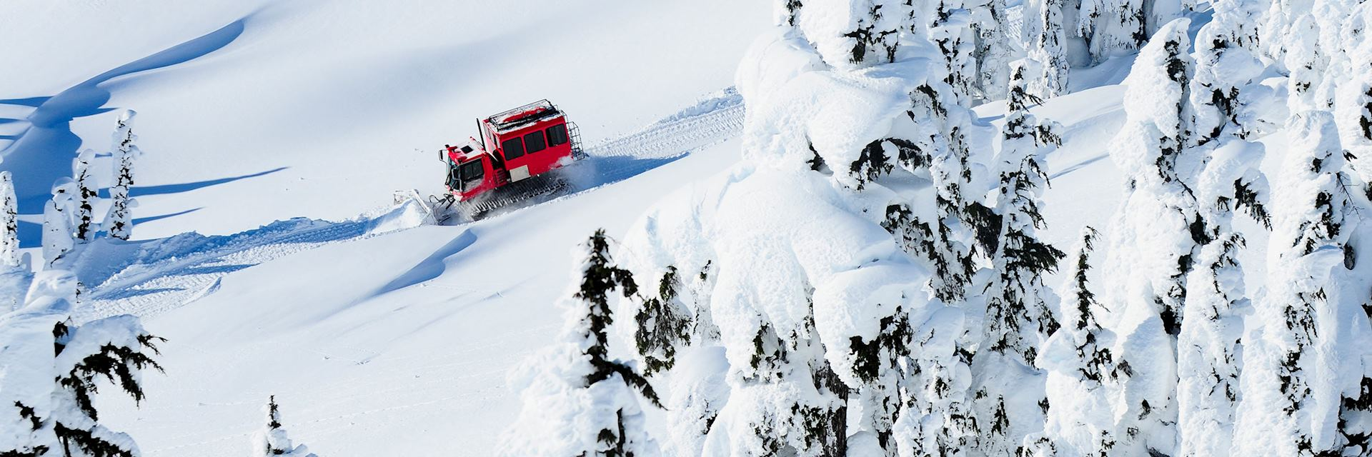 Snowcat in British Columbia