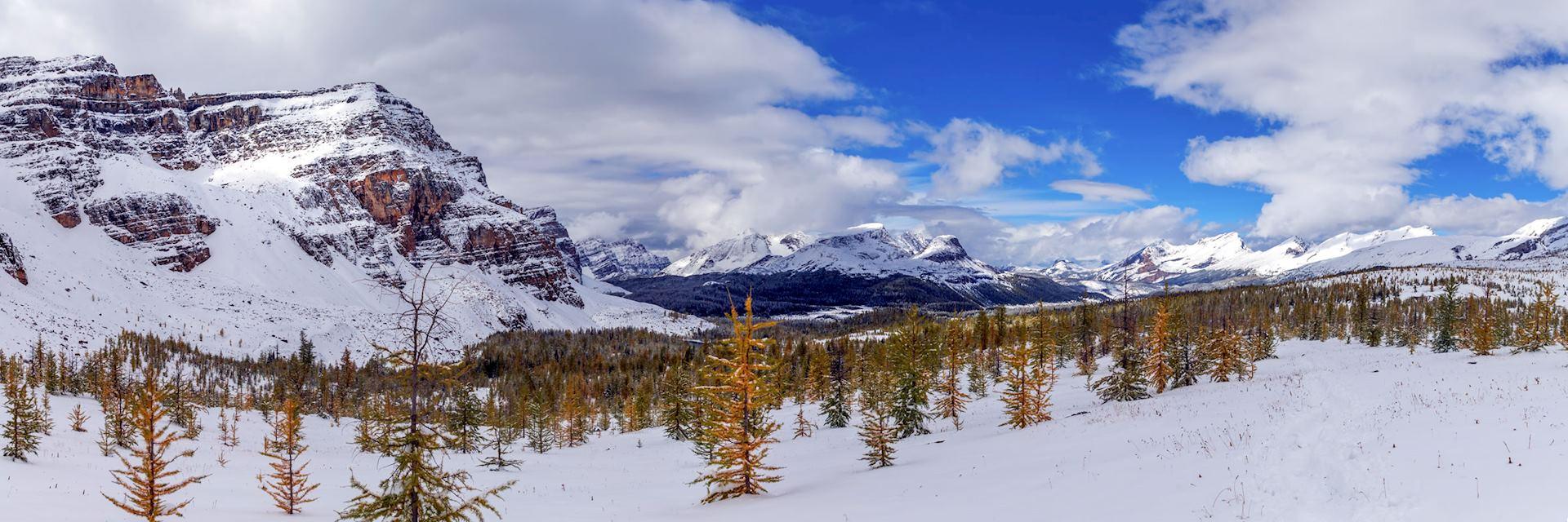 The Rockies near Jasper