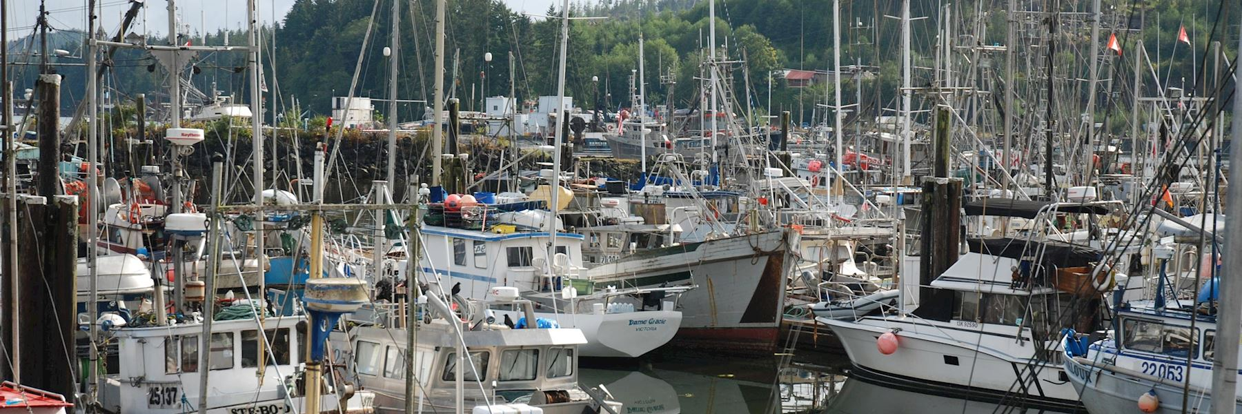 Visit Port Hardy, Canada