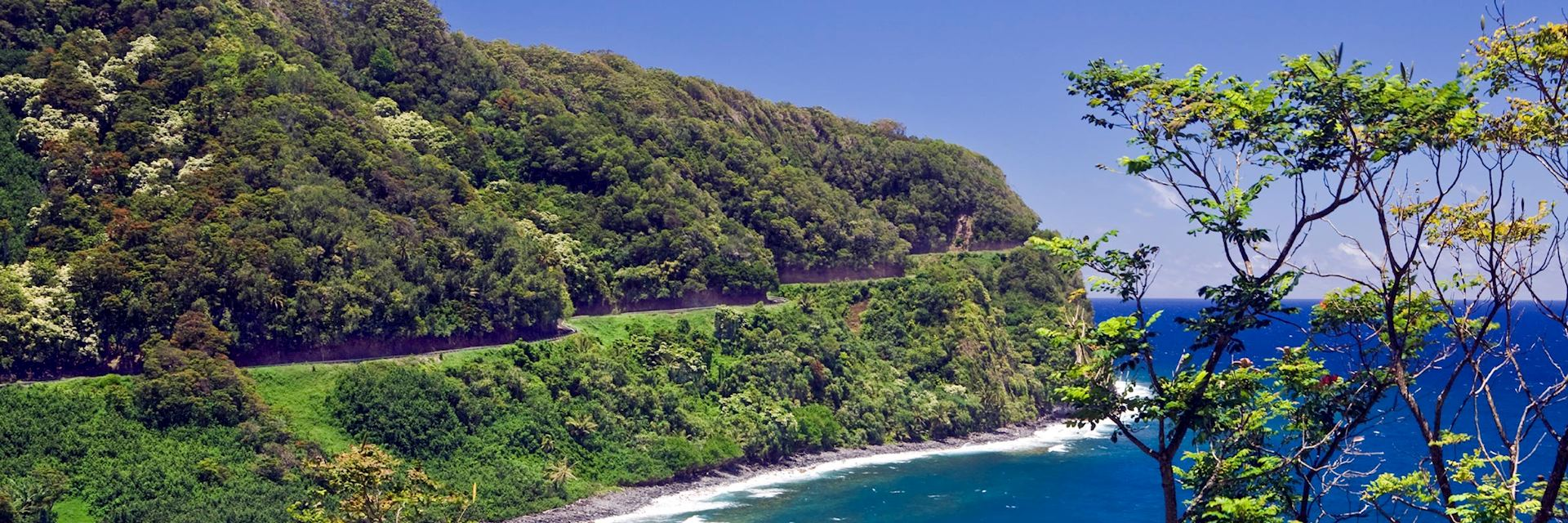 The road to Hana, Maui